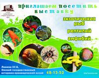 Выставка рыб, рептилии, амфибий